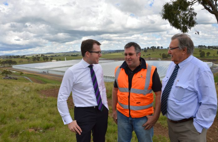COSTA GROUP GUYRA TOMATO FARM GROWTH GREAT FOR THE REGION