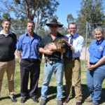 Gwydir Shire Council pet ownership funding