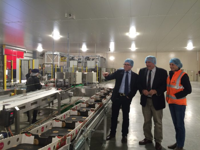 MINISTER & LOCAL MP SEE RED AT GUYRA TOMATO FARM