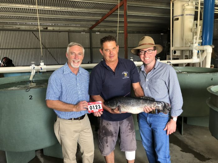 MP TALKS UP 'CASH FOR COD' TO LURE ANGLERS TO COPETON FISHING COMP