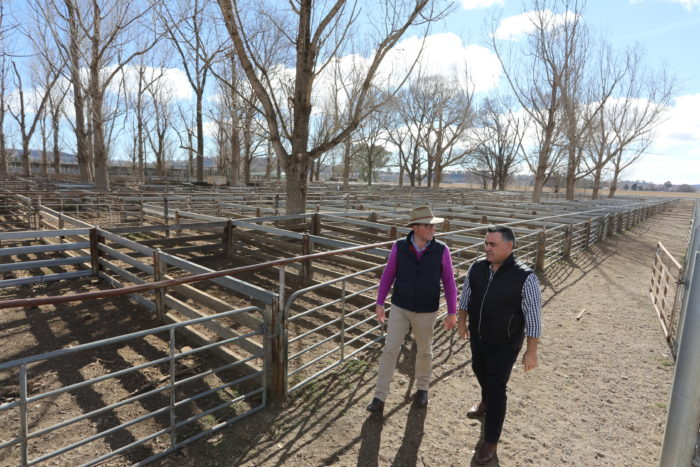 $1.25 MILLION GOVERNMENT BID DRIVES UPGRADE OF GLEN INNES SALEYARDS