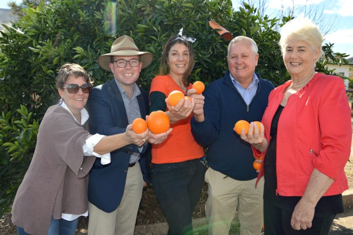 HAPPY DAYS & RECORD CROWDS FLOCK TO BINGARA ORANGE FESTIVAL