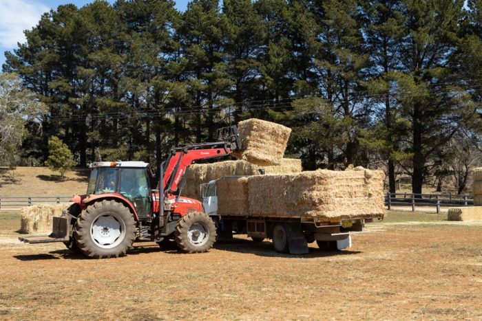 EMERGENCY BUSHFIRE FODDER DROP AT GLEN INNES SHOWGROUND