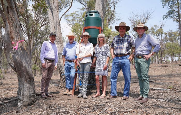 NEW WATERING HOLES FOR ARMIDALE'S THIRSTY KOALAS