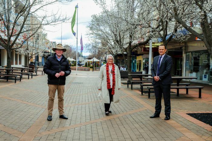 $59,522 PAINTS NEW PICTURE FOR ACCESS TO BEARDY STREET MALL