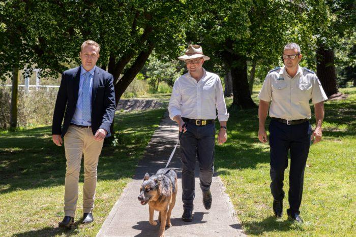 NSW SET TO UNLEASH TOUGHEST PENALTIES FOR ANIMAL CRUELTY IN AUSTRALIA